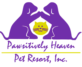 Pet Boarding and Dog Daycare